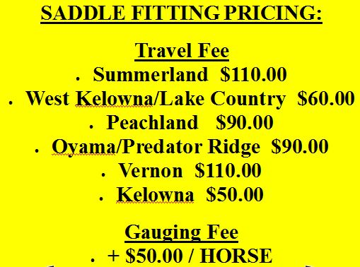 Form - Saddle fitting pricing snip
