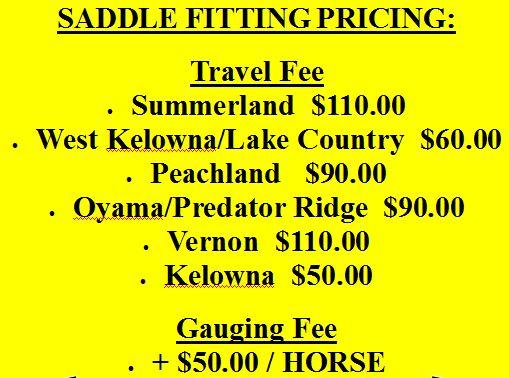 Form - Saddle fitting pricing snip